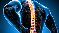 Spinal decompression spring creek medical